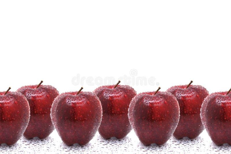Getränkte Äpfel stockfotos