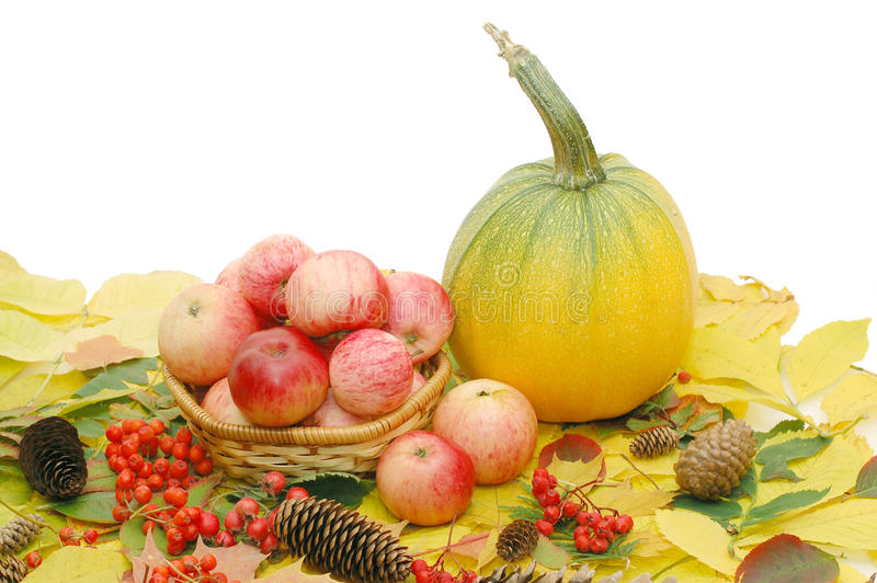 Getreide der Äpfel und des Kürbises stockfoto