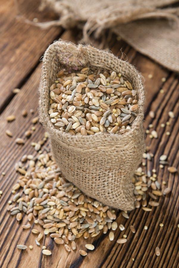 Getreide (Weizen, Roggen, Gerste, Hafer und Hirse) lizenzfreie stockfotos