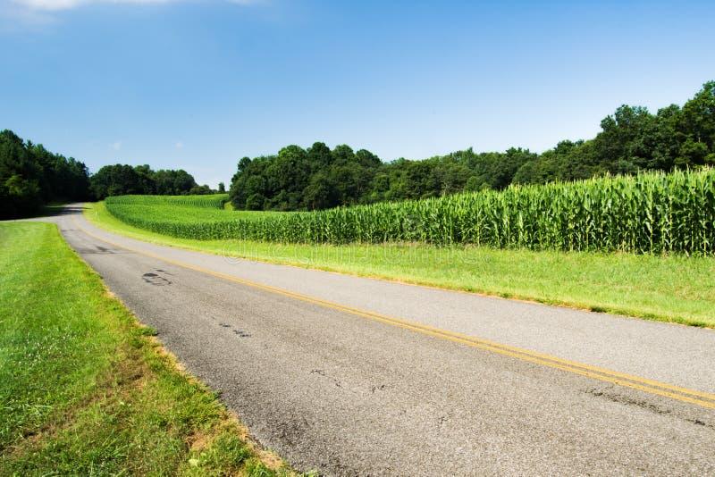 Getreidefeld durch blauen Ridge Parkway lizenzfreies stockfoto