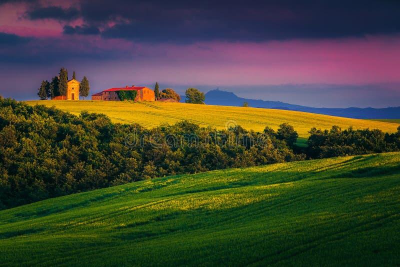 Getreidefelder und Vitaleta-Kapelle auf dem Hügel, Toskana, Italien stockfotos