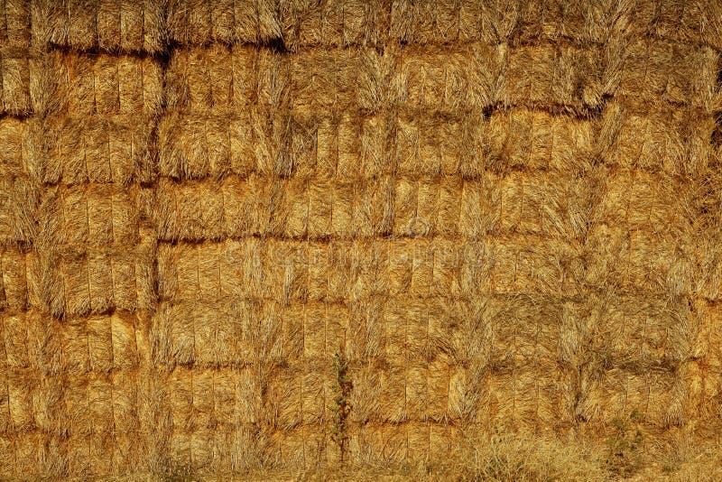 Getreidestall mit quadratischem Formstapel auf Spalten stockfotografie