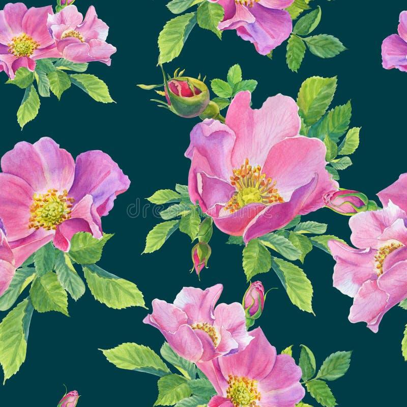Getrennt auf dem Weiß Wilde rosafarbene Blumen des Aquarells auf einem Grün stock abbildung