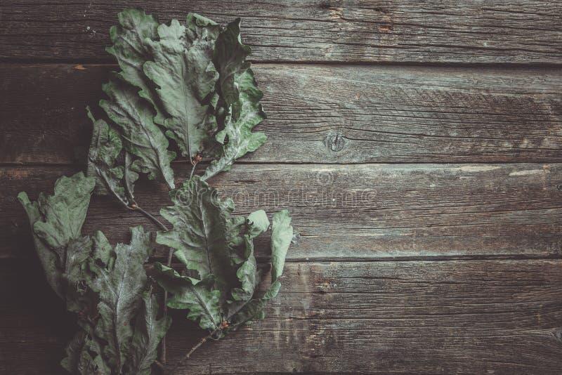 Getrennt auf Weiß Wenige trockene Eichenblätter auf altem Holztisch stockbild
