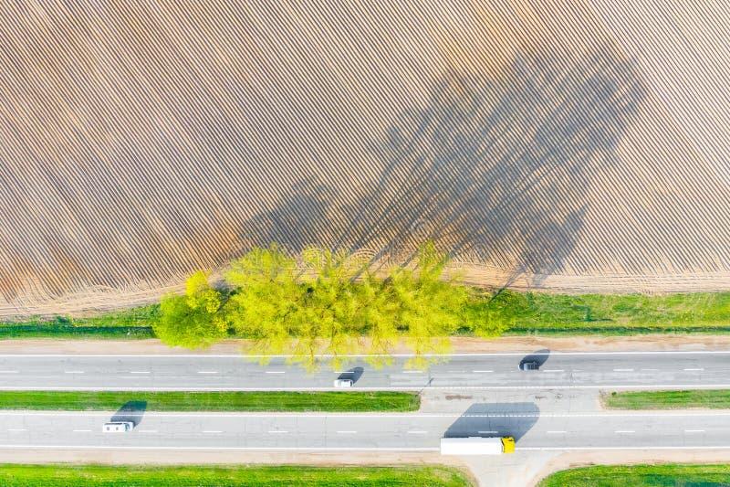 Getrennt auf Wei? Trockenes Ackerland nahe Straße Baumschatten stockfotografie