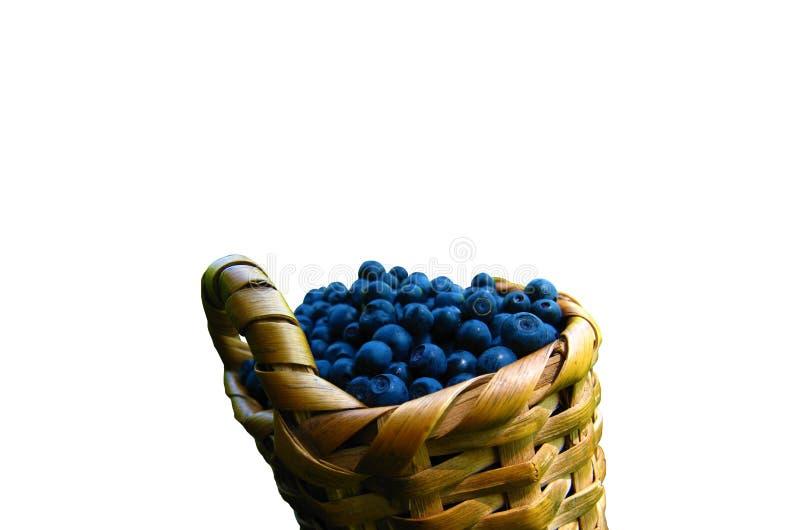 Getrennte Blaubeere Ein Korb von den Blaubeeren lokalisiert auf weißem Hintergrund stockfotos
