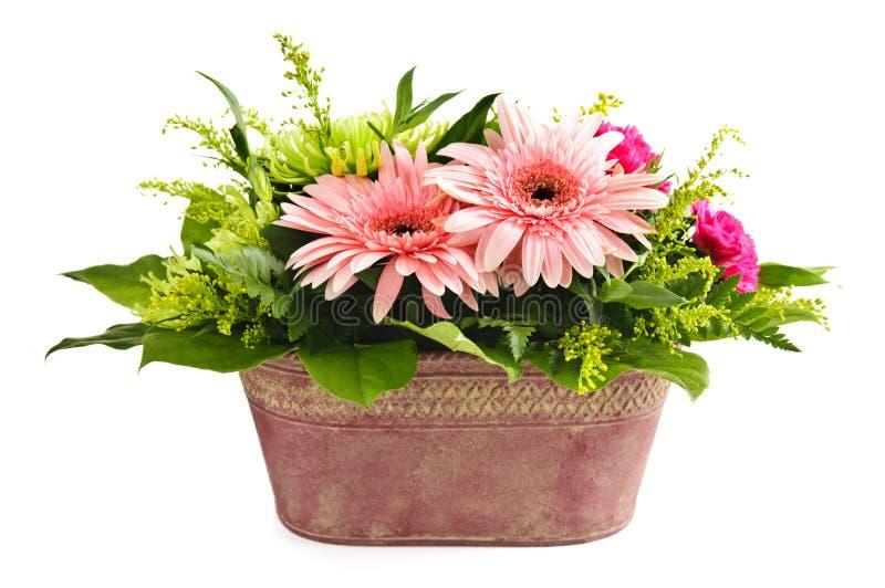 Getrennte Blumenanordnung lizenzfreie stockfotos