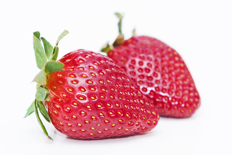 Getrennte Früchte - Erdbeeren lizenzfreie stockfotografie