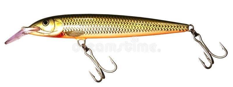 Getrennter Fischenköder stockfotos