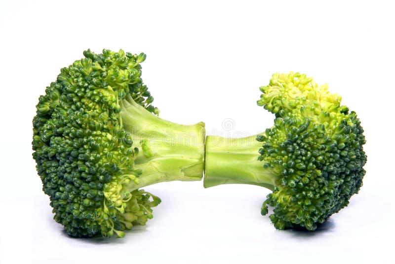 Getrennter frischer Brokkoli lizenzfreie stockfotos