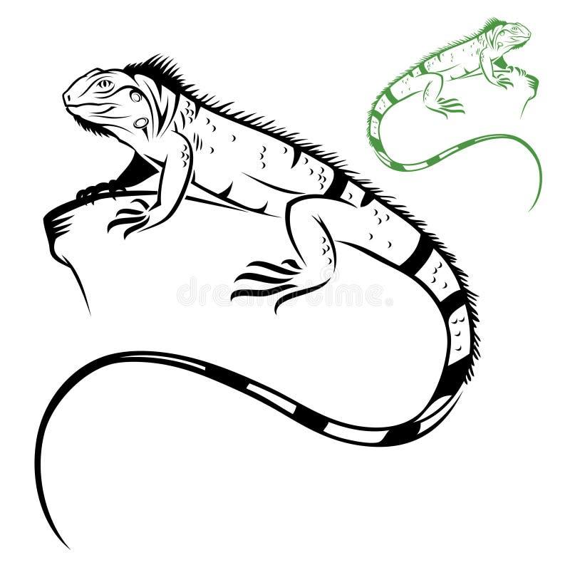 Getrennter Leguan lizenzfreie abbildung