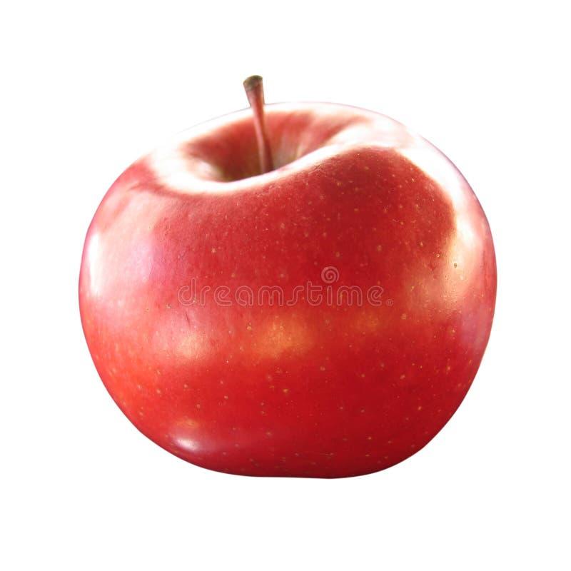 Getrennter roter Apfel lizenzfreie stockfotos