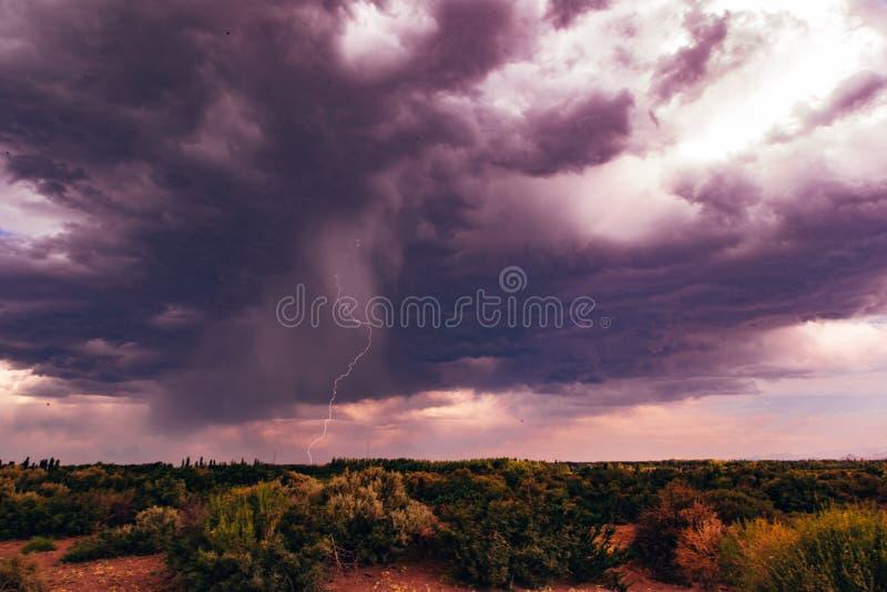Getrennter schwarzer Hintergrund lizenzfreies stockbild
