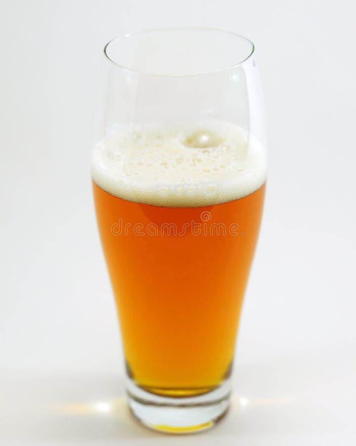 Getrenntes Glas Bier lizenzfreie stockfotos
