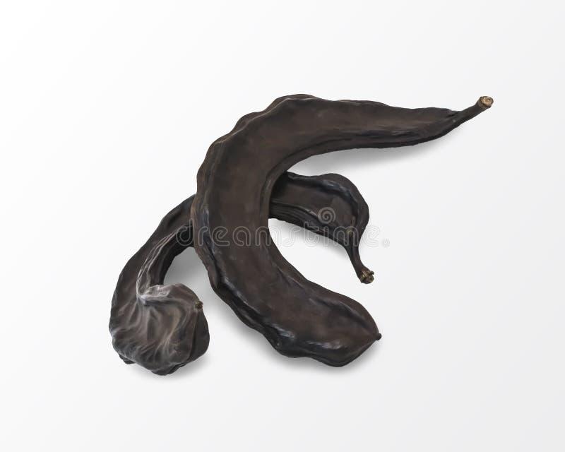 Getrocknete braune Johannisbrotbaumfr?chte lokalisiert auf wei?em Hintergrund Nahrung und Getr?nkbestandteil stockfoto