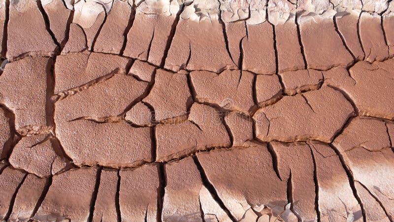 Getrocknete Erde stockbilder