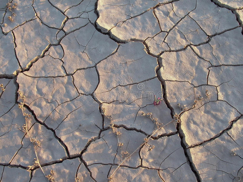 Getrocknete Erde in der Wüste stockfoto