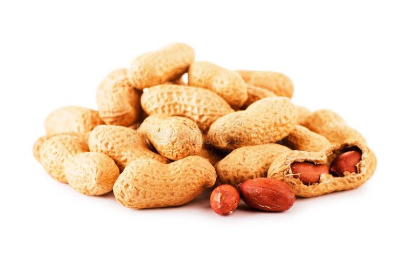 Getrocknete Erdnüsse stockbild