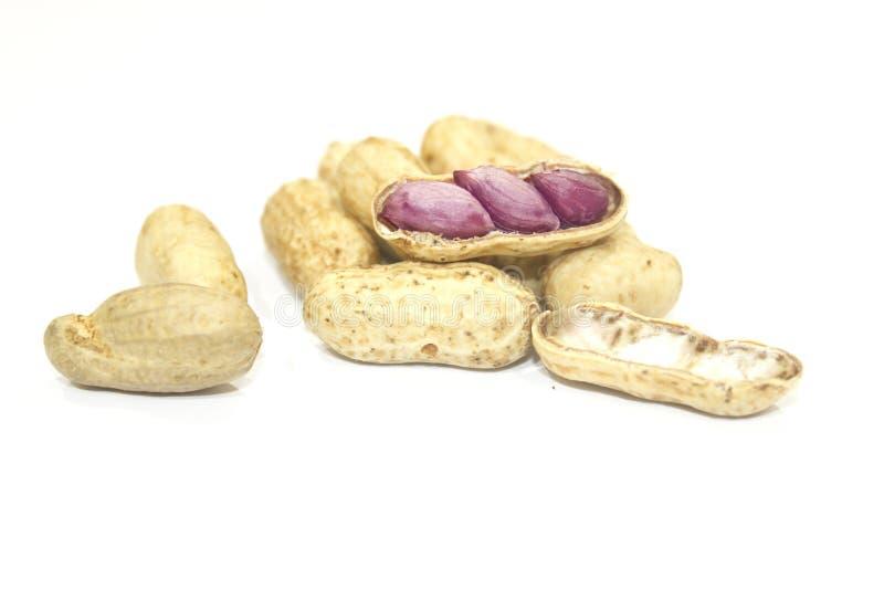Getrocknete Erdnüsse in der Nahaufnahme lizenzfreie stockbilder