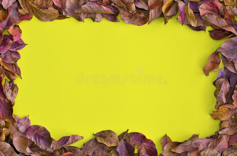 Getrocknete Fallblätter um einen gelben Hintergrund stockbilder