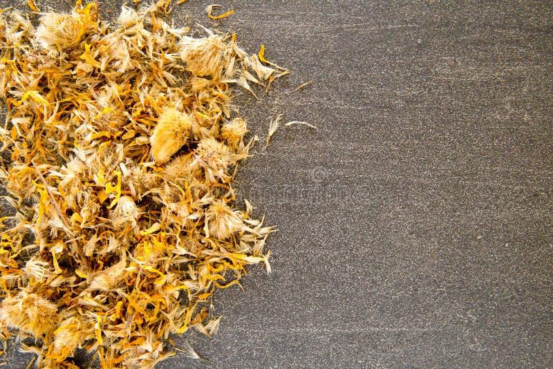 Getrocknete gelbe Arnika-Blumen auf grauem/grauem Schieferhintergrund lizenzfreies stockbild