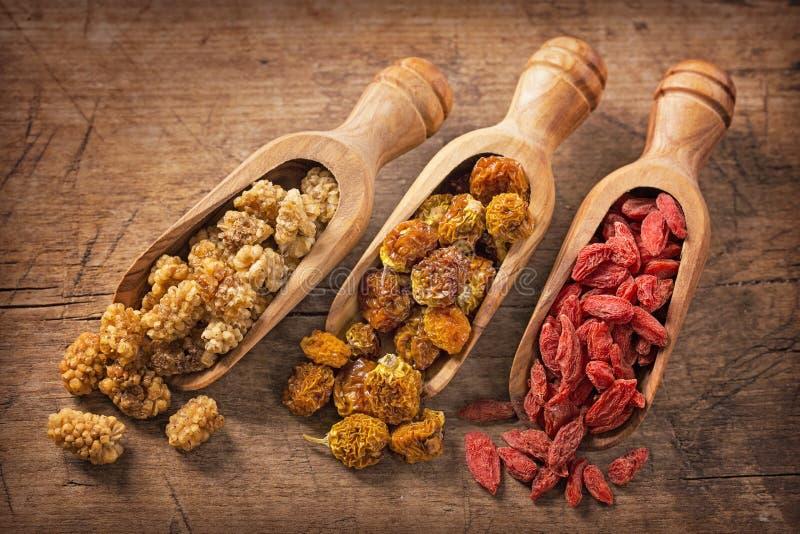 Getrocknete Maulbeeren, physalies und goji Beeren lizenzfreies stockbild