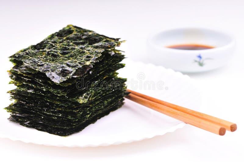 Getrocknete Meerespflanze lizenzfreies stockbild