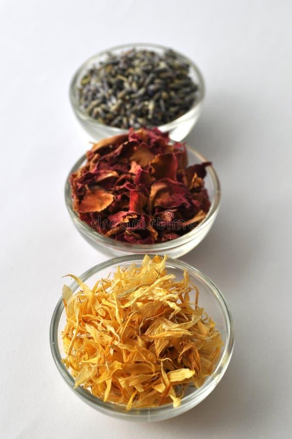 Getrocknete Ringelblume Calendulablumenblätter mit Lavendel und stiegen lizenzfreie stockfotos