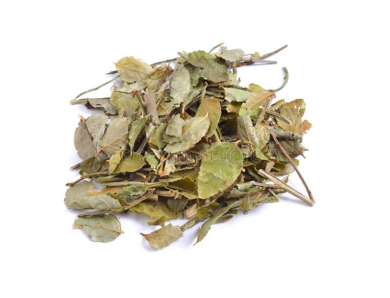 Getrocknete Rohstoffe der medizinischen Kräuter lokalisiert auf Weiß Blätter von lizenzfreie stockbilder