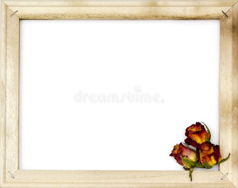getrocknete rosen im alten bilderrahmen stockfoto bild von foto rustic 50071944. Black Bedroom Furniture Sets. Home Design Ideas