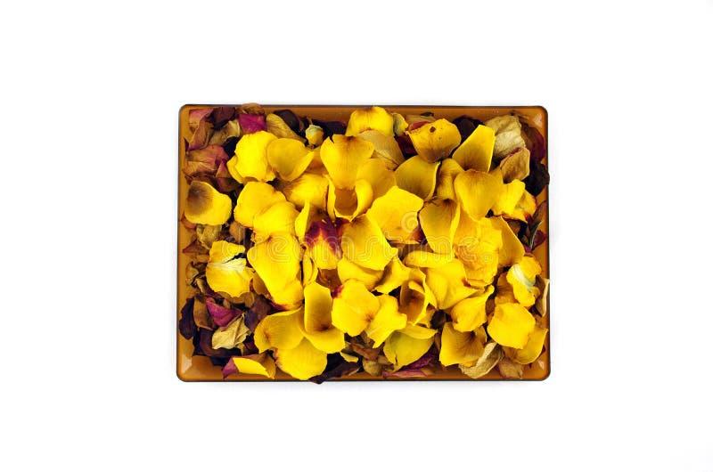 Getrocknete Rosenblätter lokalisiert auf Weiß lizenzfreies stockbild