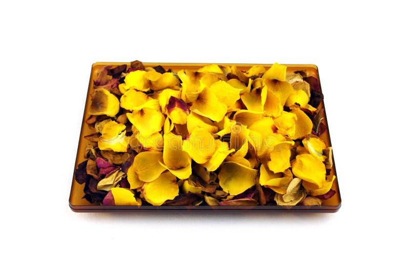 Getrocknete Rosenblätter lokalisiert auf Weiß lizenzfreie stockbilder