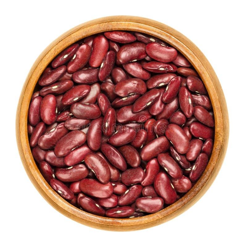 Getrocknete rote Gartenbohnen in der hölzernen Schüssel über Weiß stockfoto