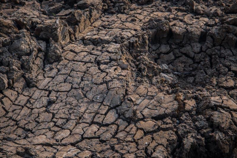 Getrockneter Boden stockbild