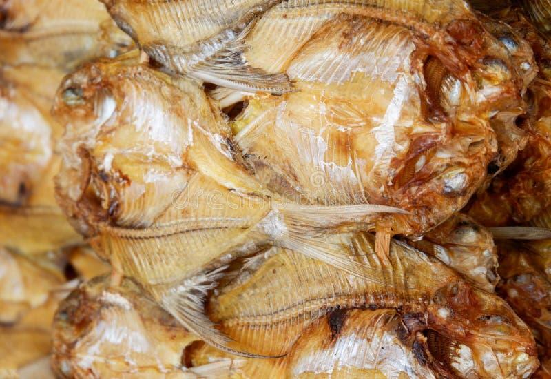 Getrockneter Fischhintergrund stockfotografie