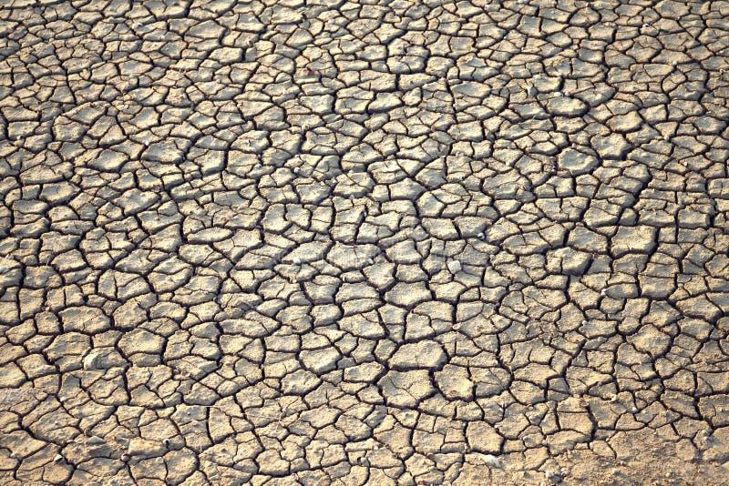 Getrockneter Grundhintergrund des gebrochenen Erdbodens stockfoto