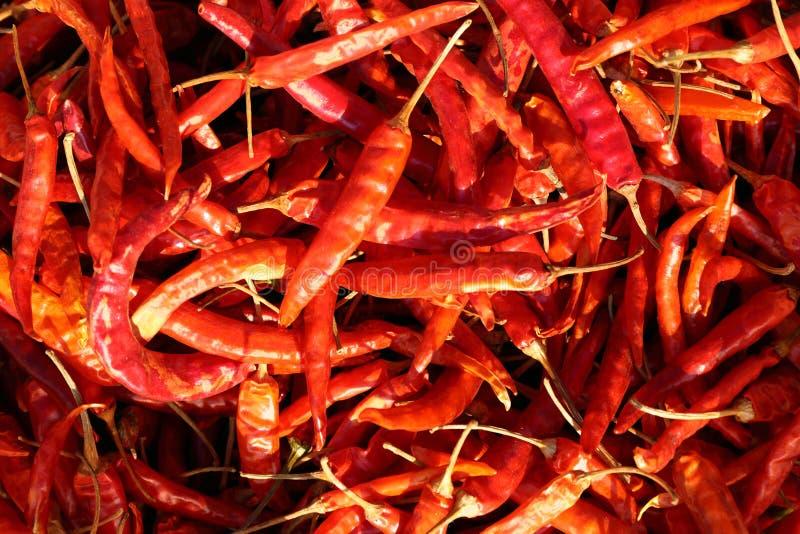 Getrockneter heißer roter Pfeffer lizenzfreies stockfoto