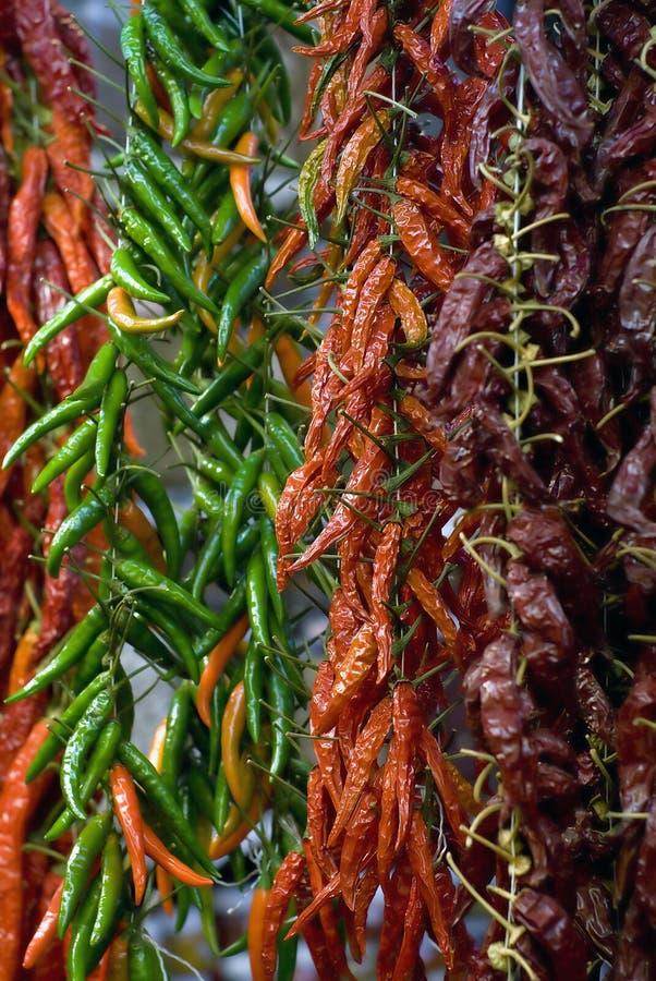 Getrockneter Paprika stockfoto