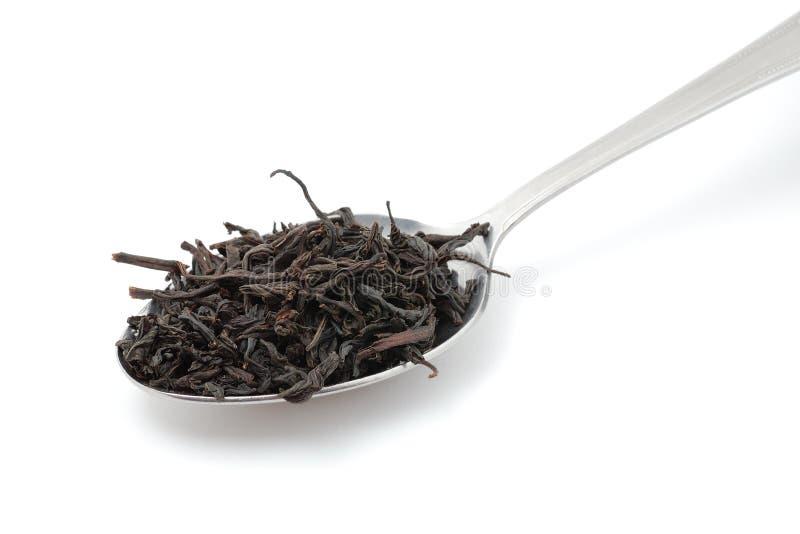 Getrockneter schwarzer Tee im Metalllöffel lizenzfreies stockfoto