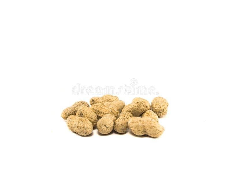 Getrocknetes Erdnuss gebackenes salziges auf weißem Hintergrund stockfotos