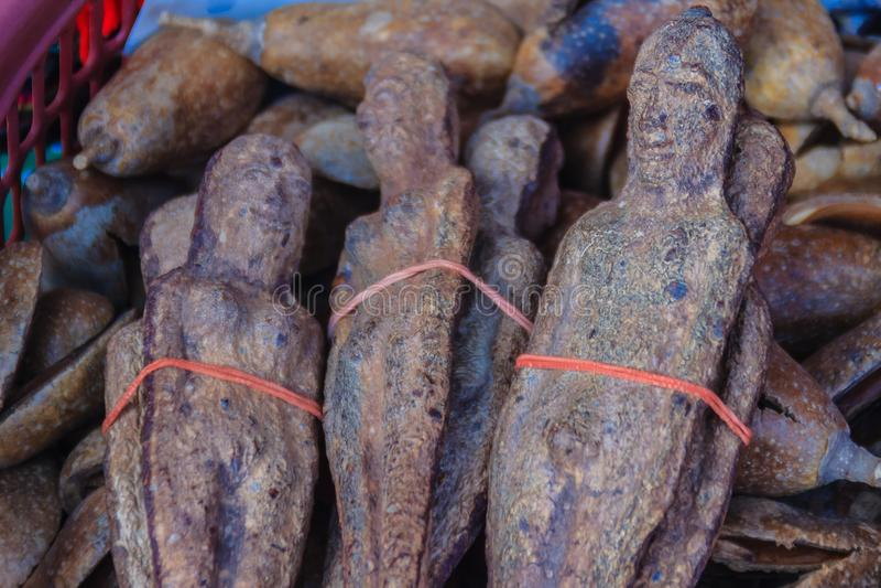 Getrocknetes Nariphon trägt für Verkauf am Amulettmarkt, Thailand Früchte T stockfoto