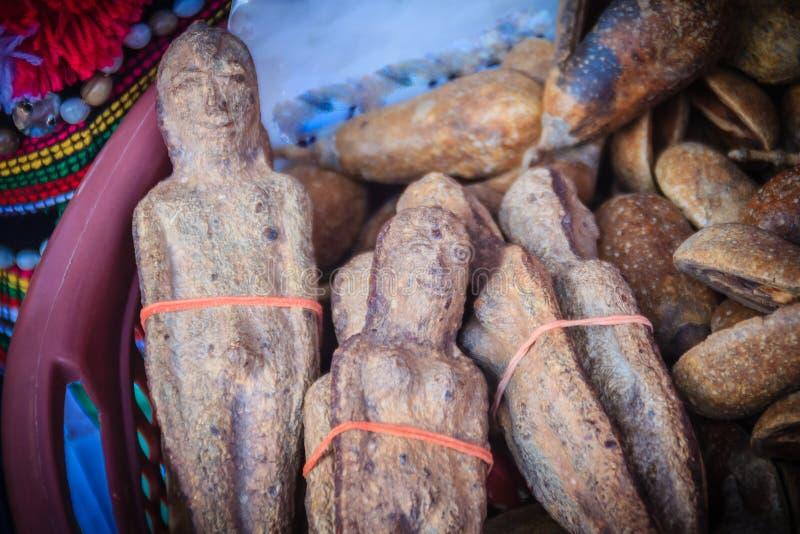 Getrocknetes Nariphon trägt für Verkauf am Amulettmarkt, Thailand Früchte T lizenzfreie stockbilder