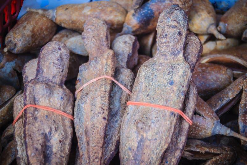 Getrocknetes Nariphon trägt für Verkauf am Amulettmarkt, Thailand Früchte T stockbild