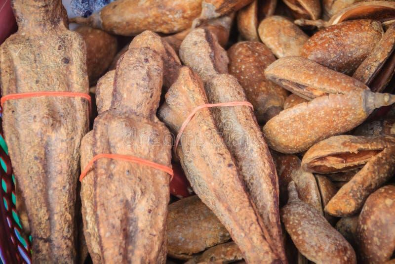 Getrocknetes Nariphon trägt für Verkauf am Amulettmarkt, Thailand Früchte T lizenzfreie stockfotos