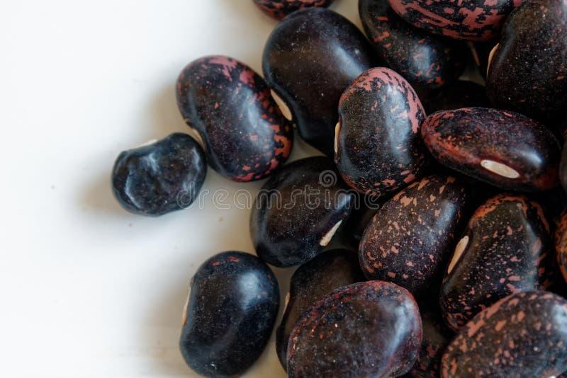 Getrocknetes Nierenbraun sprenkelte Bohnen das Konzept der richtigen Nahrung und des gesunden Lebensstils Draufsicht, Nahaufnahme lizenzfreies stockfoto