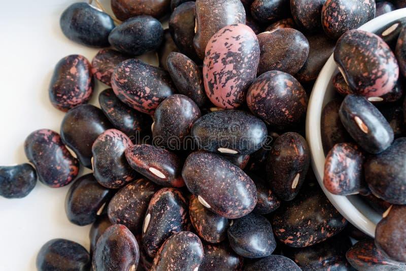 Getrocknetes Nierenbraun sprenkelte Bohnen das Konzept der richtigen Nahrung und des gesunden Lebensstils Draufsicht, Nahaufnahme stockfotos