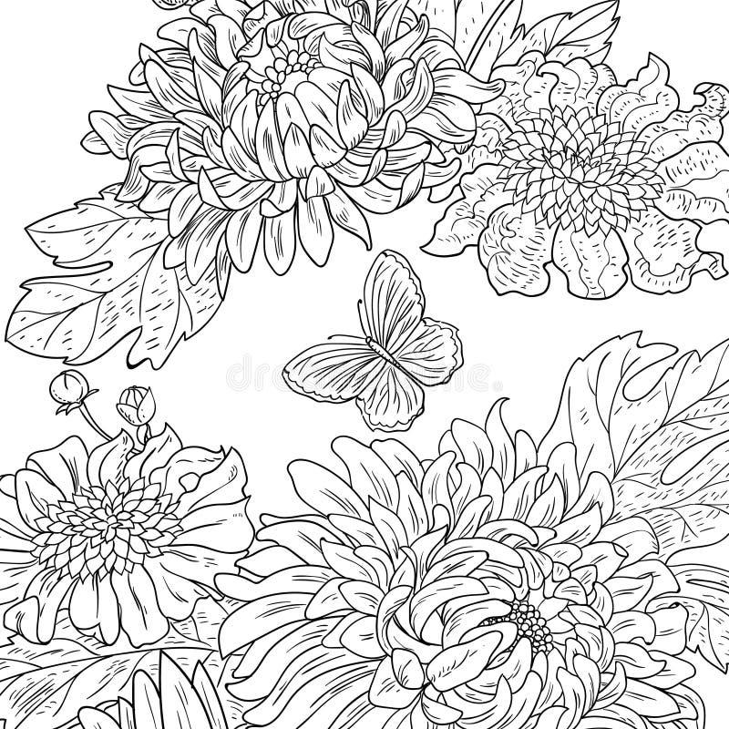 Getrokken de chrysant bloeit zwarte witte vector stock illustratie