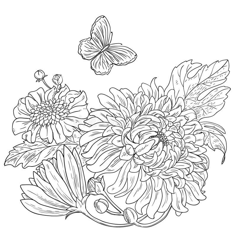 Getrokken de chrysant bloeit zwarte witte vector vector illustratie