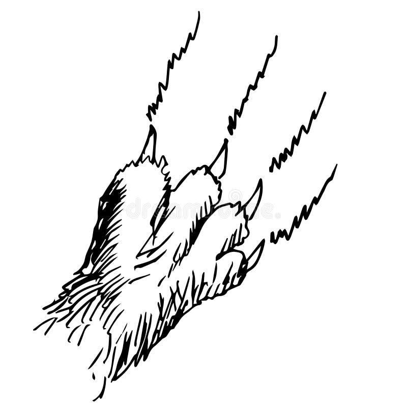 Getrokken de krabbelhand van de kattenklauw stock illustratie