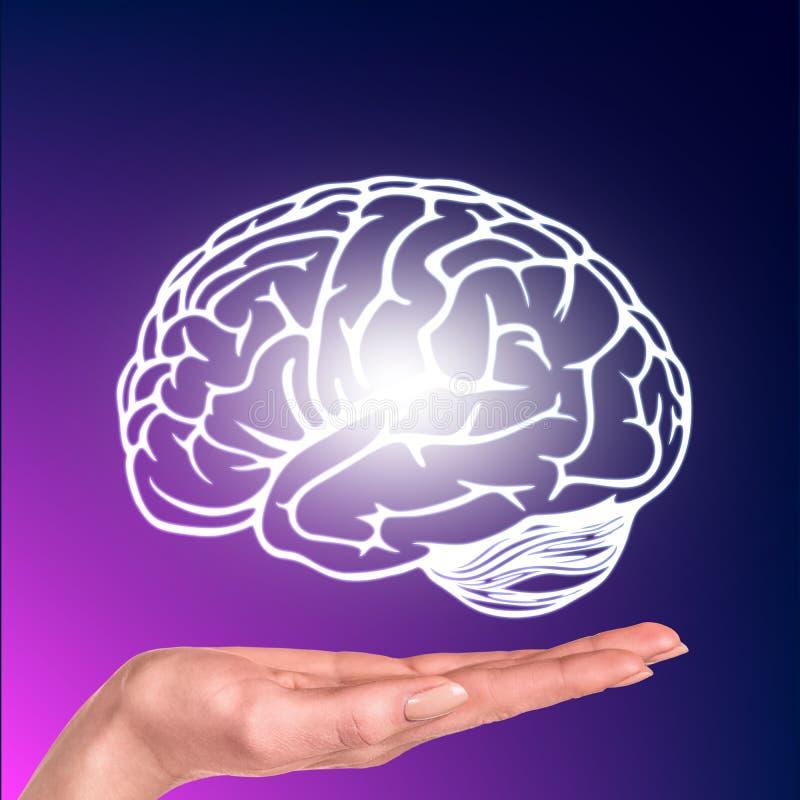 Getrokken die hersenen over de menselijke hand worden gehangen stock fotografie